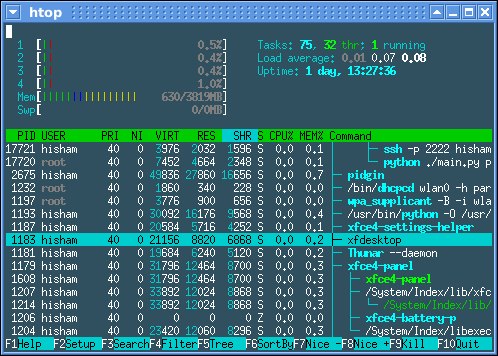 [Image: htop-1.0-screenshot.png]